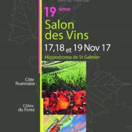 Salon de la loire aux 3 vignobles saint galmier d lices for Salon des vins de loire 2017