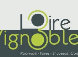 Salon de la Loire aux 3 Vignobles Saint-Galmier 2018